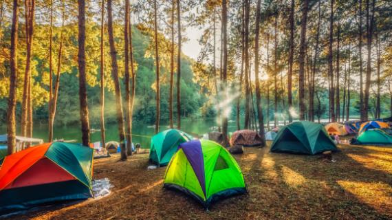 Tempat Camping Keluarga Asik Di Malang